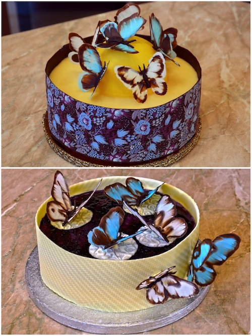 Howtocookthat Cakes Dessert Chocolate Chocolate Butterfly