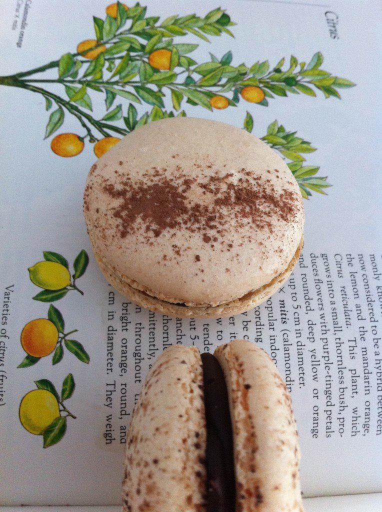 choc orange macaroons