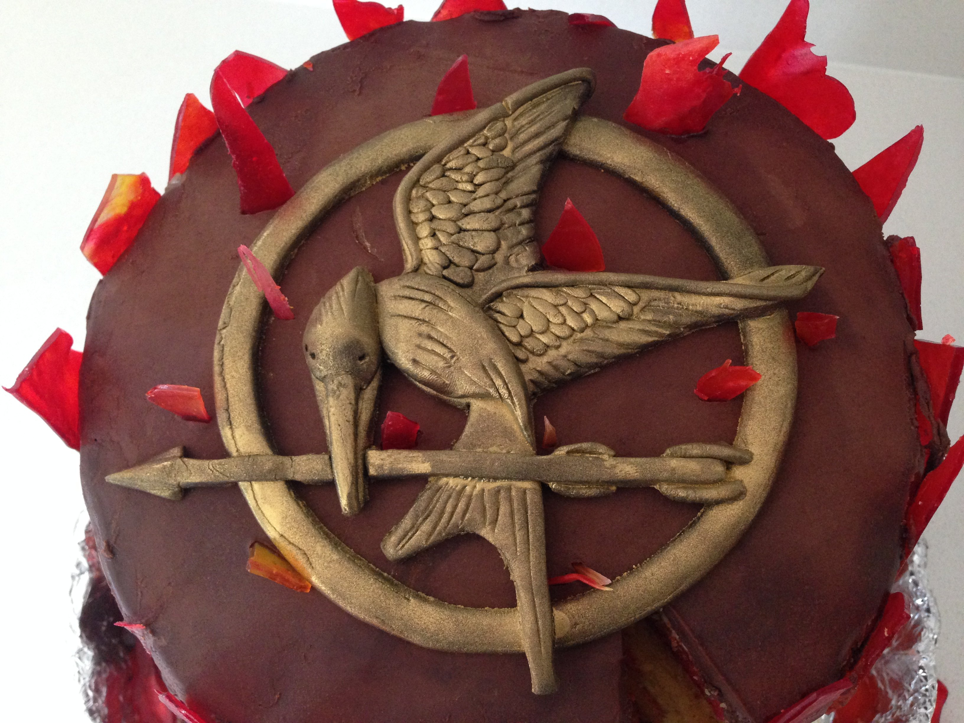 Hunger Games Chocolate Cake