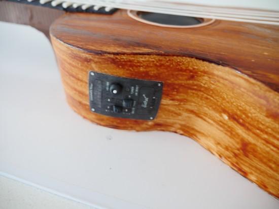 guitar cake ann reardon