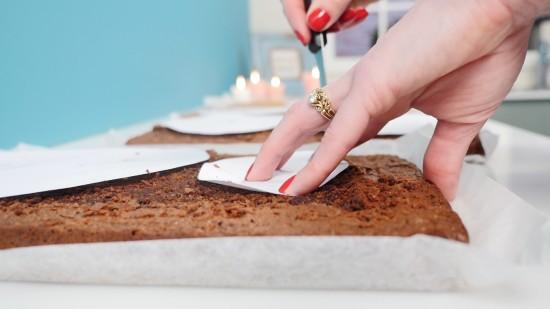 squirrel cake tutorial
