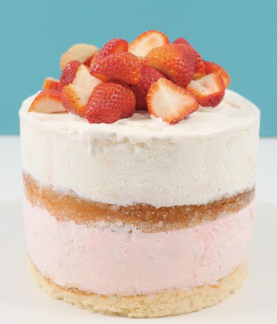 ice-cream cake recipes ann reardon