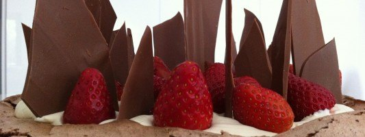 chocolate pavalova easy gourmet dessert recipe how to cook that best cooking blog