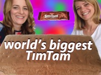 homemade tim tam recipe
