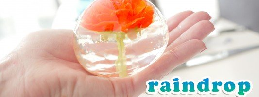 raindrop cake ann reardon