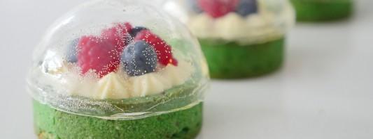 sugar dome dessert ann reardon