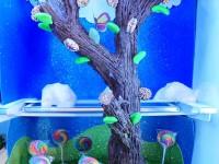 chocolate tree ann reardon